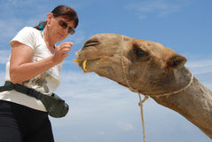 Woman and Camel Royalty Free Stock Photo