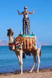 Woman on a Camel. A young woman stands on a camel on the beach near the ocean Royalty Free Stock Image