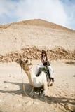 Woman camel and pyramid Stock Image