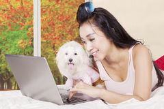 Woman and canine playing laptop in autumn season Stock Photography