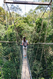 Woman on the canopy bridge walk Stock Photos