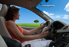 The woman, the car Stock Photography