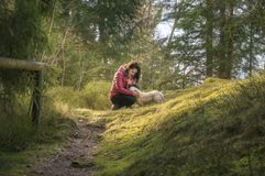 Woman caressing her dog in a fir forest Royalty Free Stock Image