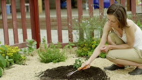Woman caring for a plant stock footage