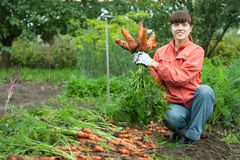 Woman with carrot harvest Royalty Free Stock Images