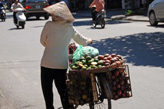 Woman carrying a basket of fruit in hanoi. Woman carrying a basket of fruit on a bicycle in hanoi royalty free stock images