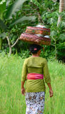 A woman carrying goods on her head in Bali, Indonesia Royalty Free Stock Photos