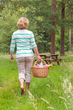 Woman carrying a picnic basket Royalty Free Stock Photos