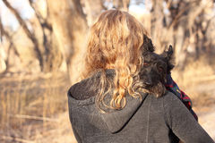 Woman Carrying Scottish Terrier Dog. Woman walking while carrying her Scottish Terrier Stock Photography