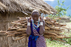 Woman carrying sticks. Photography taken in Arusha, Tanzania royalty free stock photography