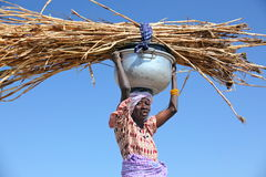 Woman carrying straw Royalty Free Stock Photo