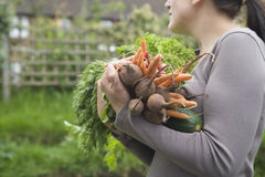 Woman Carrying Various Harvested Vegetables Stock Images