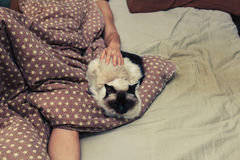 Woman and cat in bed Royalty Free Stock Images