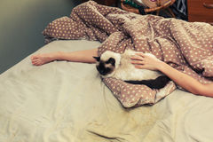 Woman and cat in bed Stock Photos