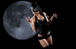 Woman in cat costume Stock Images