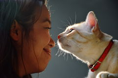 Woman and cat eye contract together Stock Photography