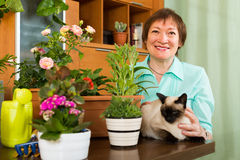 Woman with cat and flower plants Royalty Free Stock Image