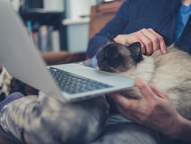 Woman with cat and laptop Royalty Free Stock Image