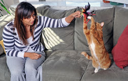 Woman and cat play on couch Royalty Free Stock Photography