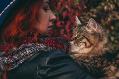 Woman with cat walks in the park royalty free stock photos
