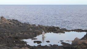 A woman catch crab , Fuerteventura, stock video footage
