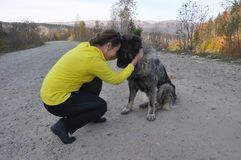A woman and a Caucasian Shepherd dog are sitting nearby on the road. A young woman and a Caucasian shepherd sitting on a dirt road and hugging royalty free stock photography