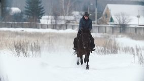 Woman in cawboy hat galloping on big dark horse in snow field - slow-motion. Shot stock video