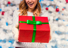Woman celebrating Christmas Royalty Free Stock Image