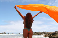 Woman Celebrating Life Royalty Free Stock Image