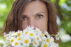 Woman and chamomile Stock Images