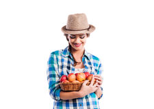 Woman, checked shirt holding basket with apples. Autumn harvest Royalty Free Stock Images