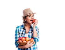 Woman, checked shirt holding basket with fruit. Eating apple. Beautiful young woman in blue checked shirt and hat holding a basket full of apples, eating royalty free stock photography