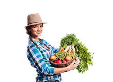 Woman, checked shirt holding basket with fruit and vegetables Royalty Free Stock Images