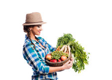 Woman, checked shirt holding basket with fruit and vegetables Stock Photography
