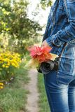 Woman in checkered shirt with camera holding bouquet of red leav. Es on rural road background Royalty Free Stock Photos