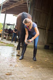 Woman Checking Her Horse`s Hooves Stock Photo