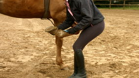 Woman checking her horses hoof in paddock stock footage