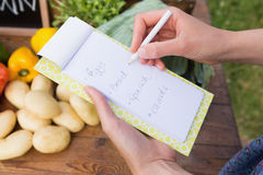 Woman checking her shopping list Stock Images