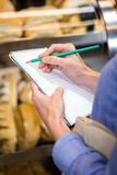Woman checking her shopping list Royalty Free Stock Image