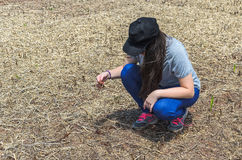 Woman checking soybean root after harvest Stock Photography