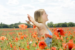 Woman cheering in poppy field Royalty Free Stock Photo