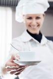 Woman Chef Stock Image