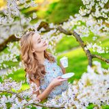 Woman in cherry blossom garden with cup of tea Stock Photography
