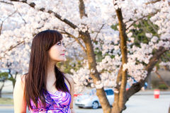 Woman in Cherry Blossom. Portrait face closeup Stock Image