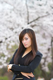 Woman in cherry blossom Royalty Free Stock Photos