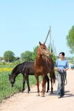 Woman and chestnut horse walking at the road Stock Photos