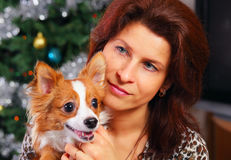 Woman with chihuahua royalty free stock photography