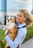 Woman with chihuahua. Stock Photo