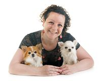Woman and chihuahua Stock Images