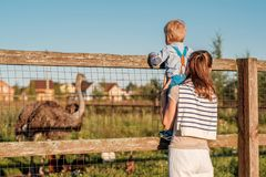 Woman and child at farm looking at ostrich Stock Photo